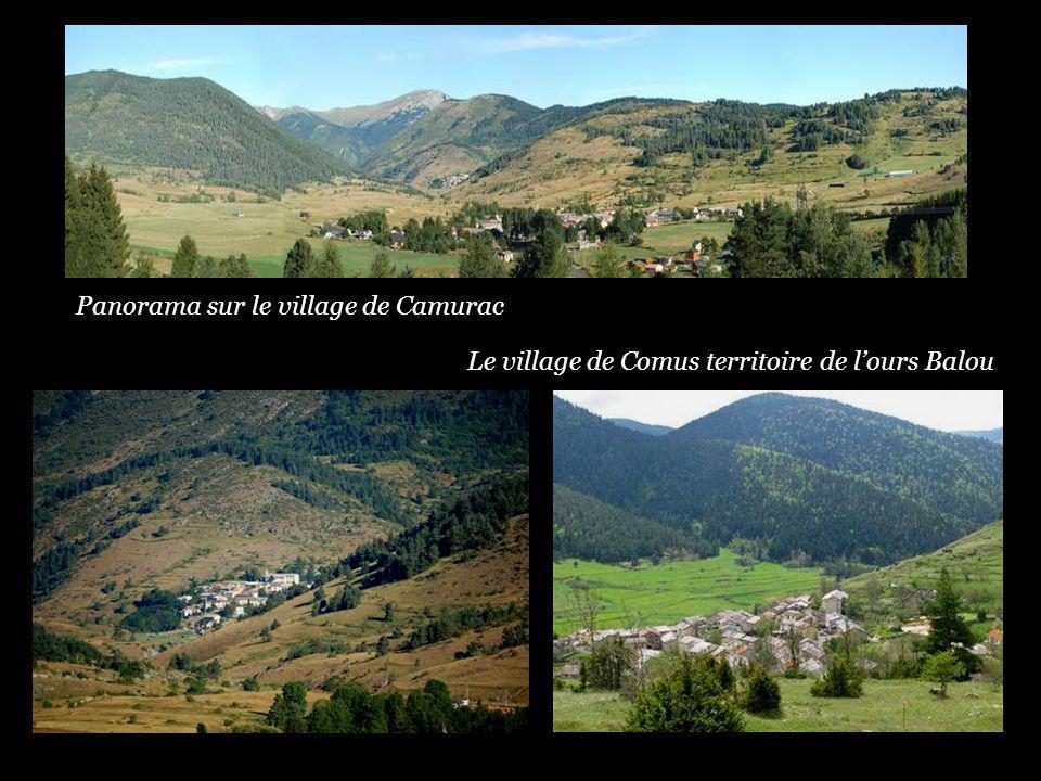 Panorama sur le village de Camurac