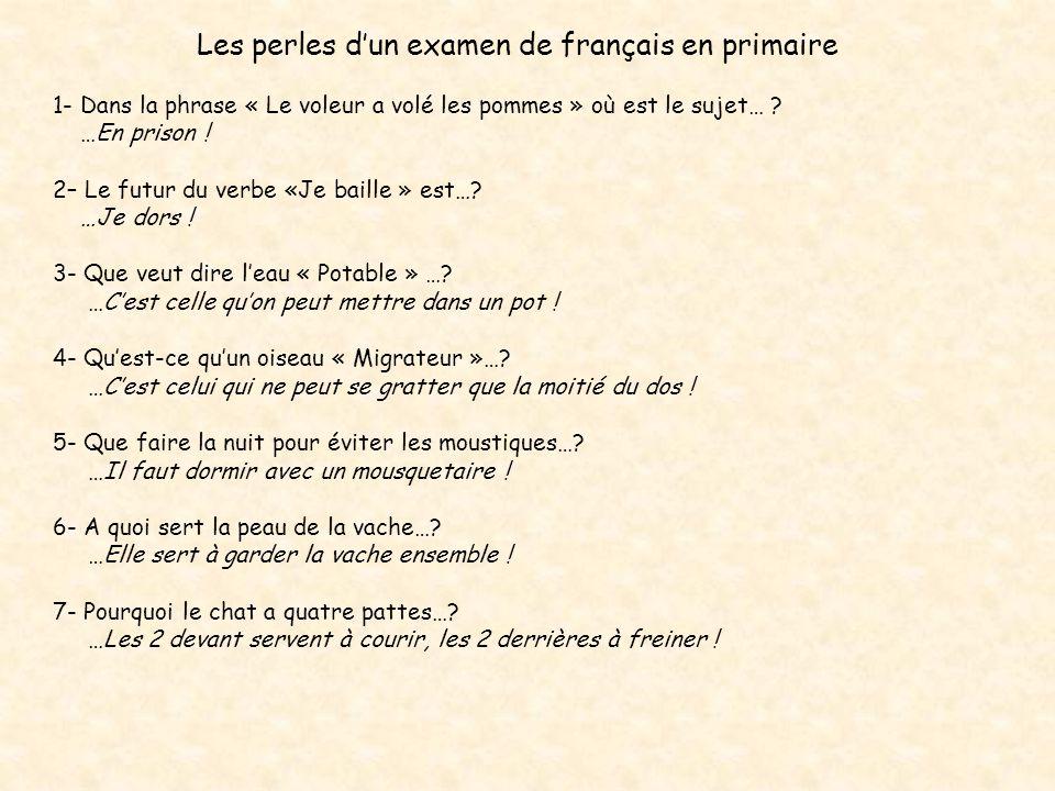 Les perles d'un examen de français en primaire
