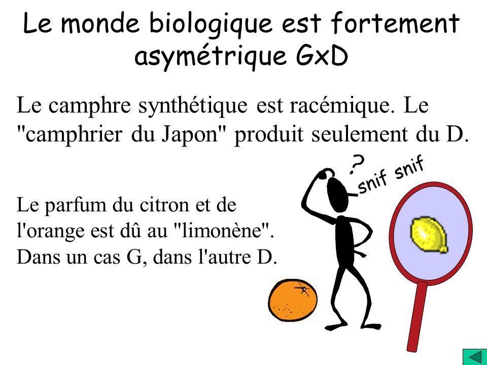 Le monde biologique est fortement asymétrique GxD