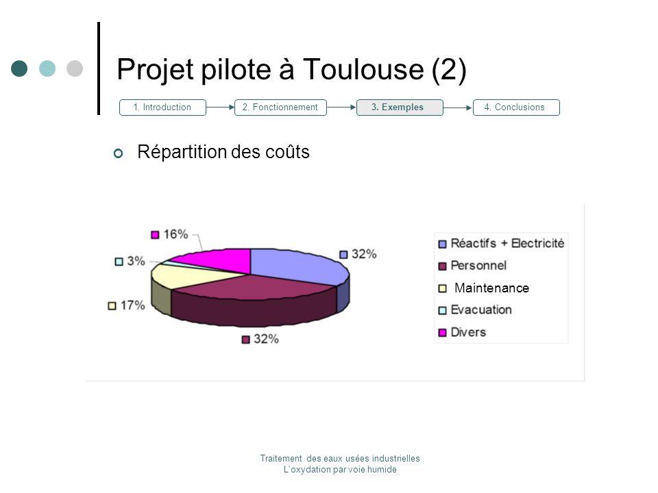 Projet pilote à Toulouse (2)