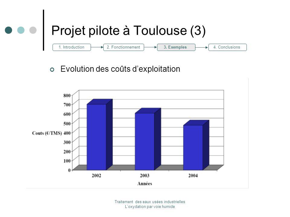 Projet pilote à Toulouse (3)