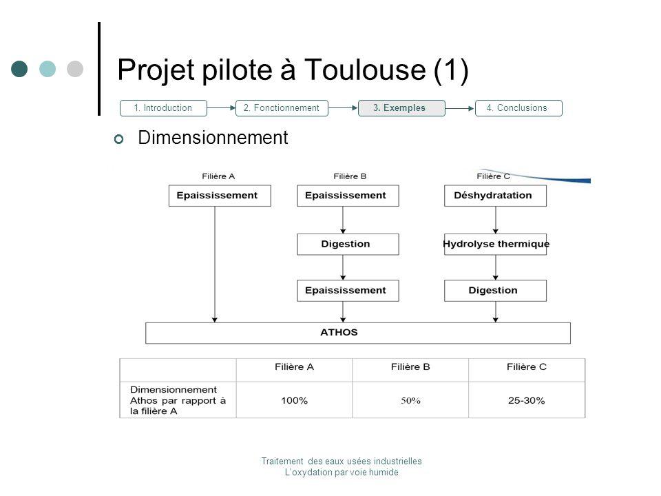 Projet pilote à Toulouse (1)