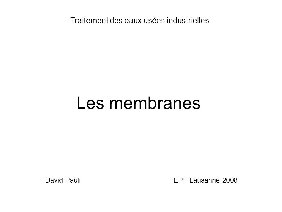 David Pauli EPF Lausanne 2008