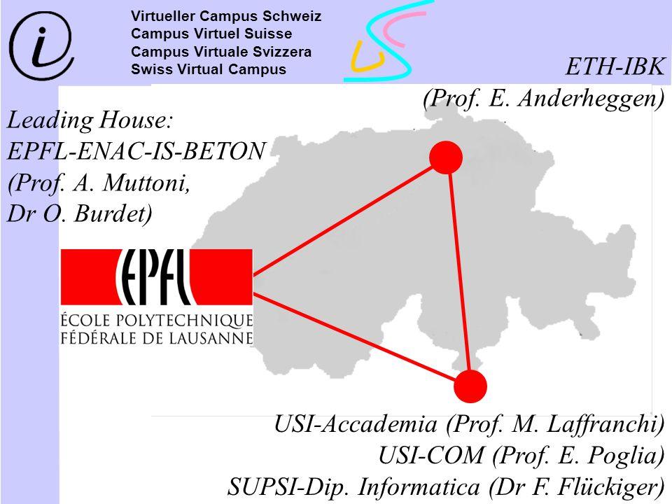 USI-Accademia (Prof. M. Laffranchi) USI-COM (Prof. E. Poglia)