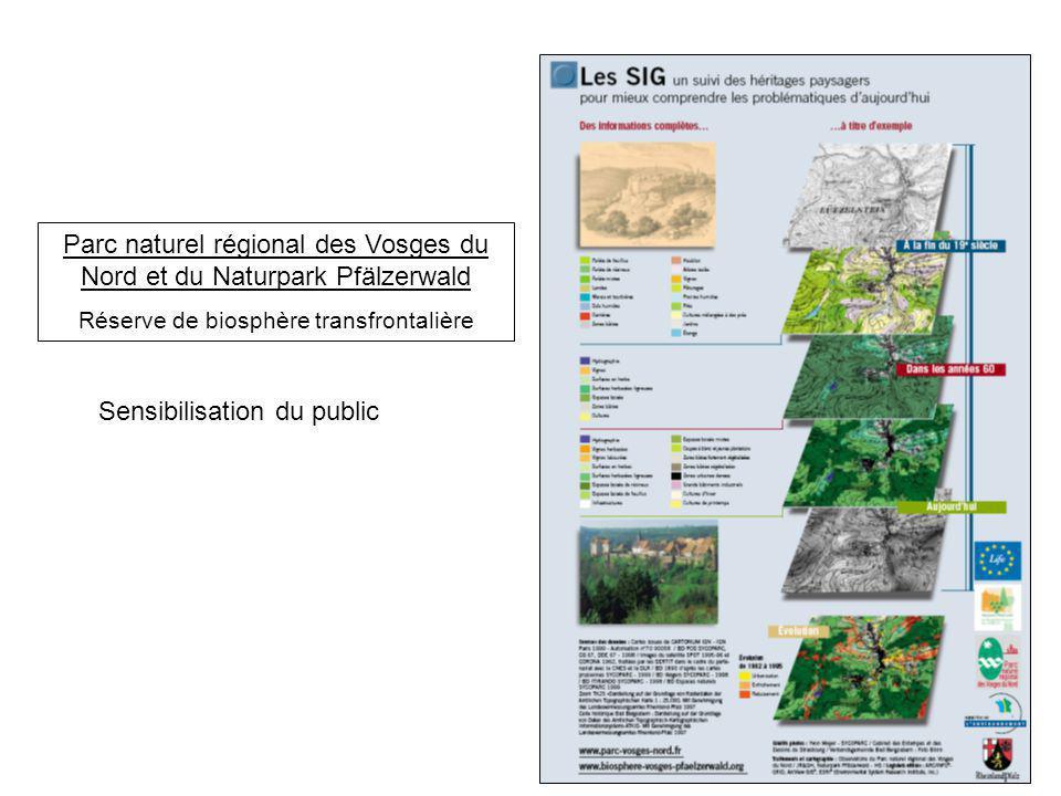 Parc naturel régional des Vosges du Nord et du Naturpark Pfälzerwald