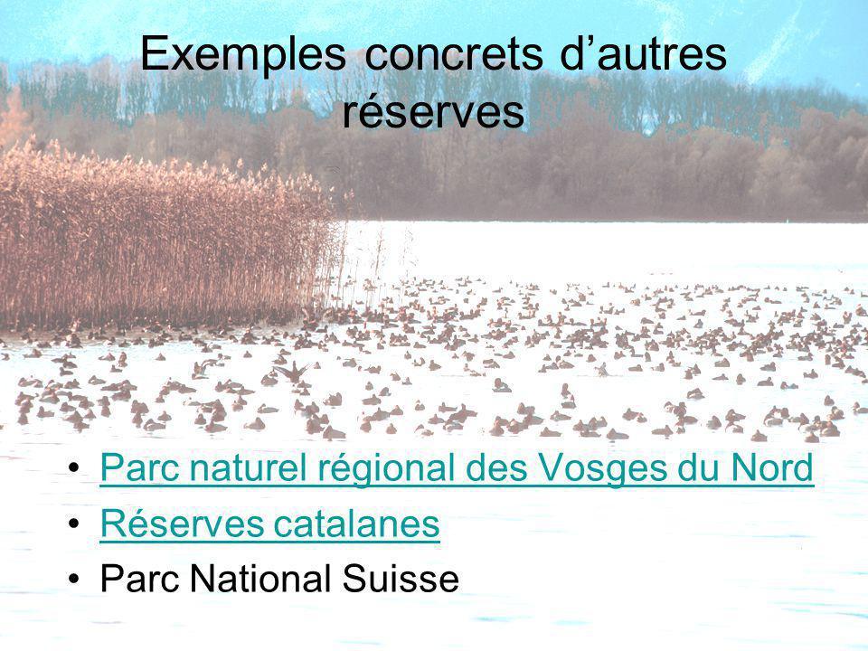 Exemples concrets d'autres réserves