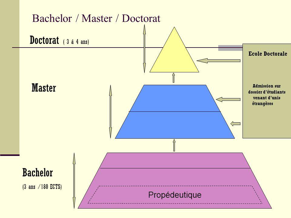 Bachelor / Master / Doctorat