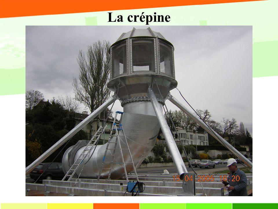 La crépine