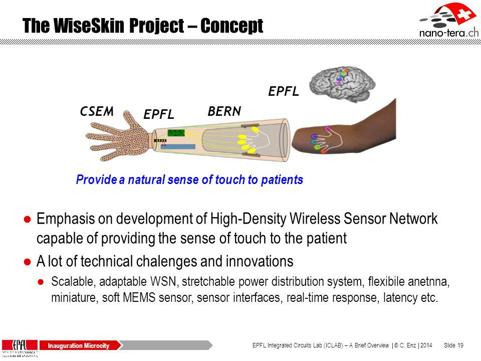 The WiseSkin Project – Concept