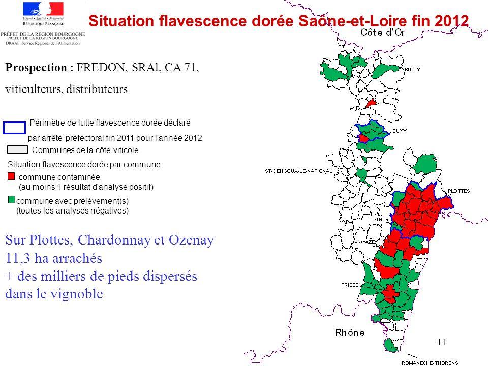 Situation flavescence dorée Saône-et-Loire fin 2012