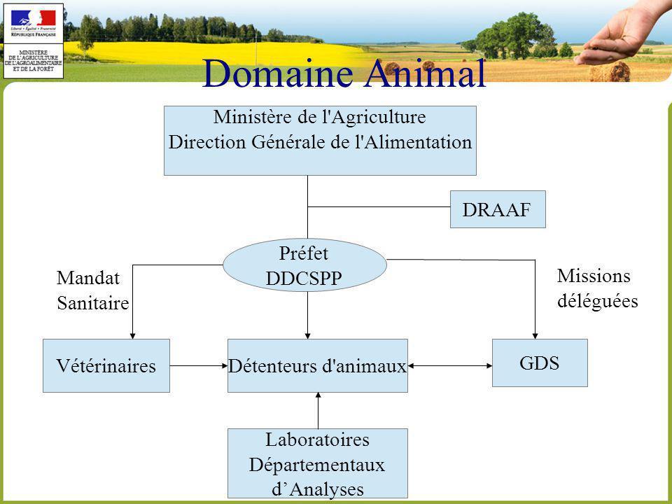 Domaine Animal Ministère de l Agriculture