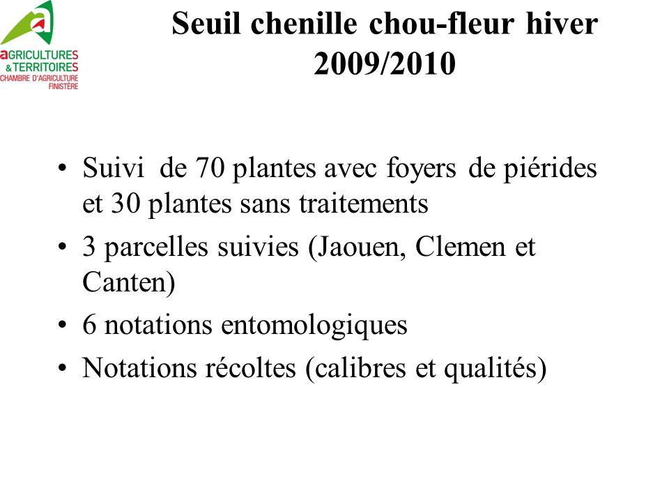 Seuil chenille chou-fleur hiver 2009/2010
