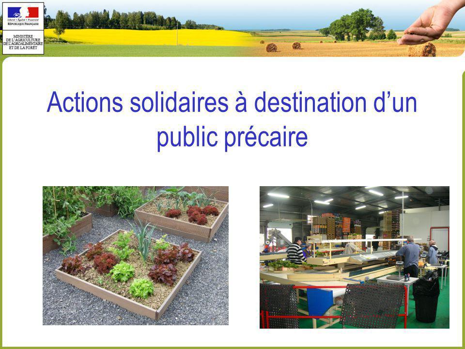 Actions solidaires à destination d'un public précaire