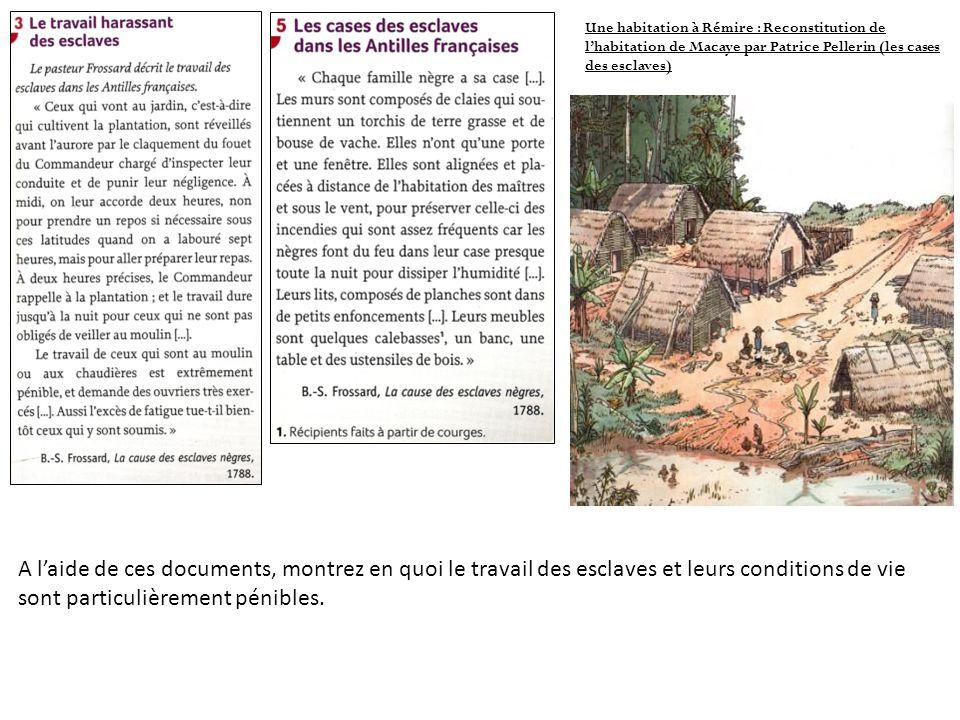 Une habitation à Rémire : Reconstitution de l'habitation de Macaye par Patrice Pellerin (les cases des esclaves)