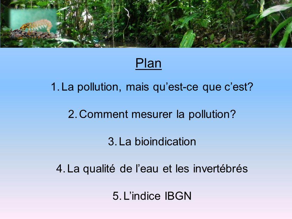 Plan La pollution, mais qu'est-ce que c'est