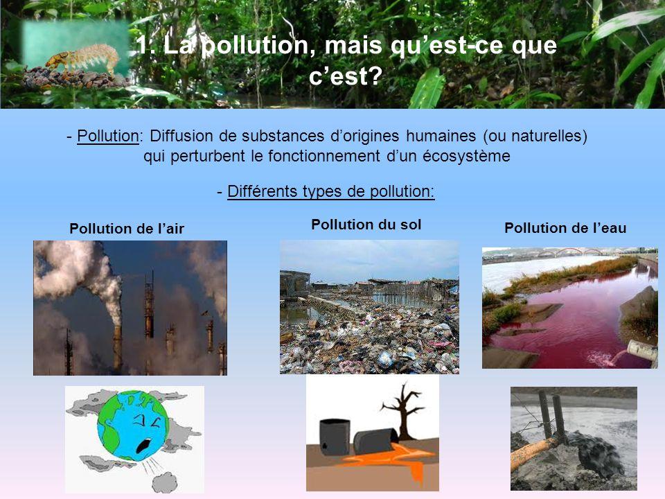 1. La pollution, mais qu'est-ce que c'est