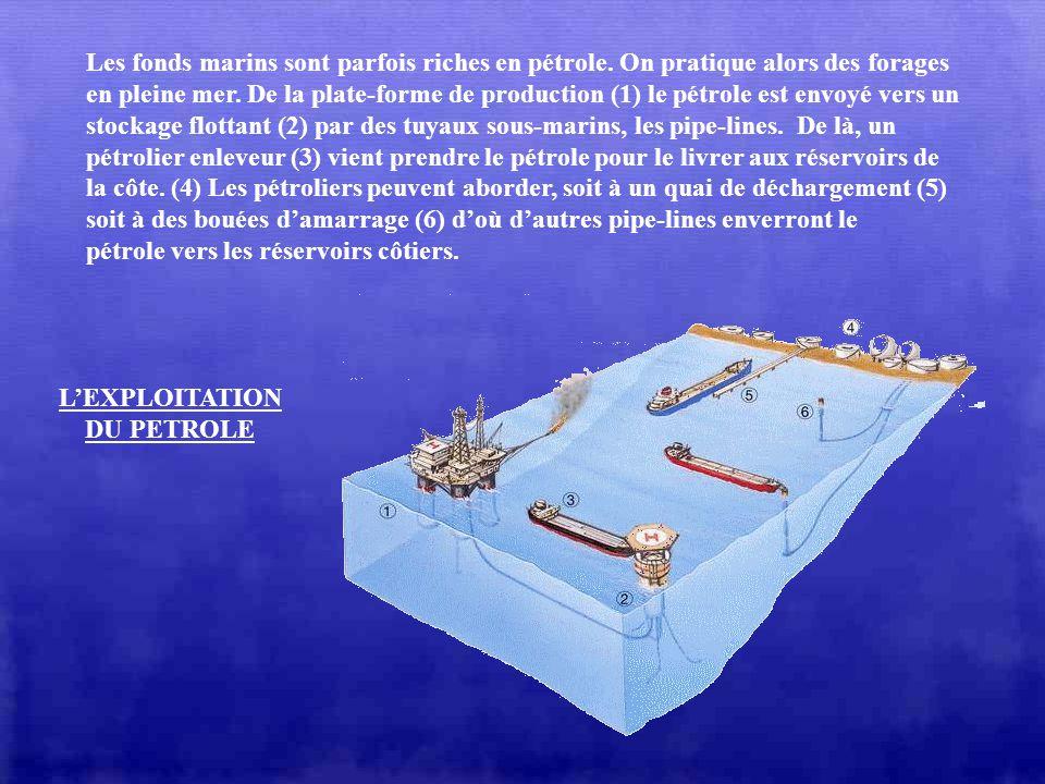 Les fonds marins sont parfois riches en pétrole