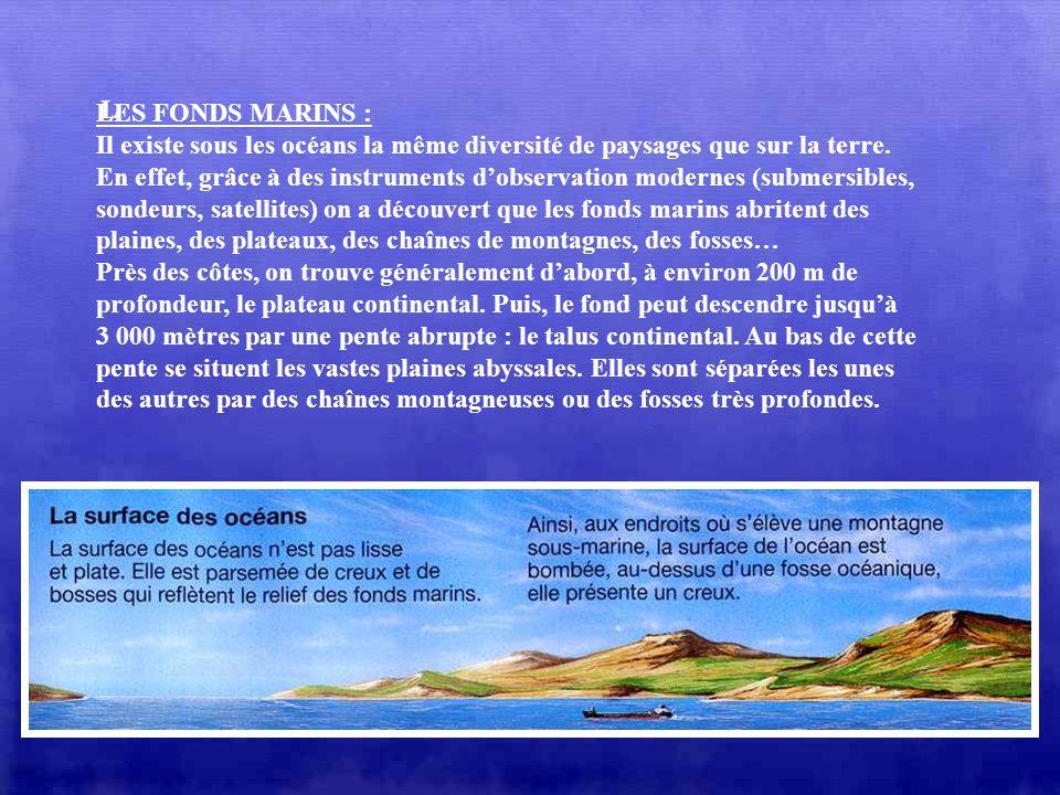 LES FONDS MARINS : Il existe sous les océans la même diversité de paysages que sur la terre.