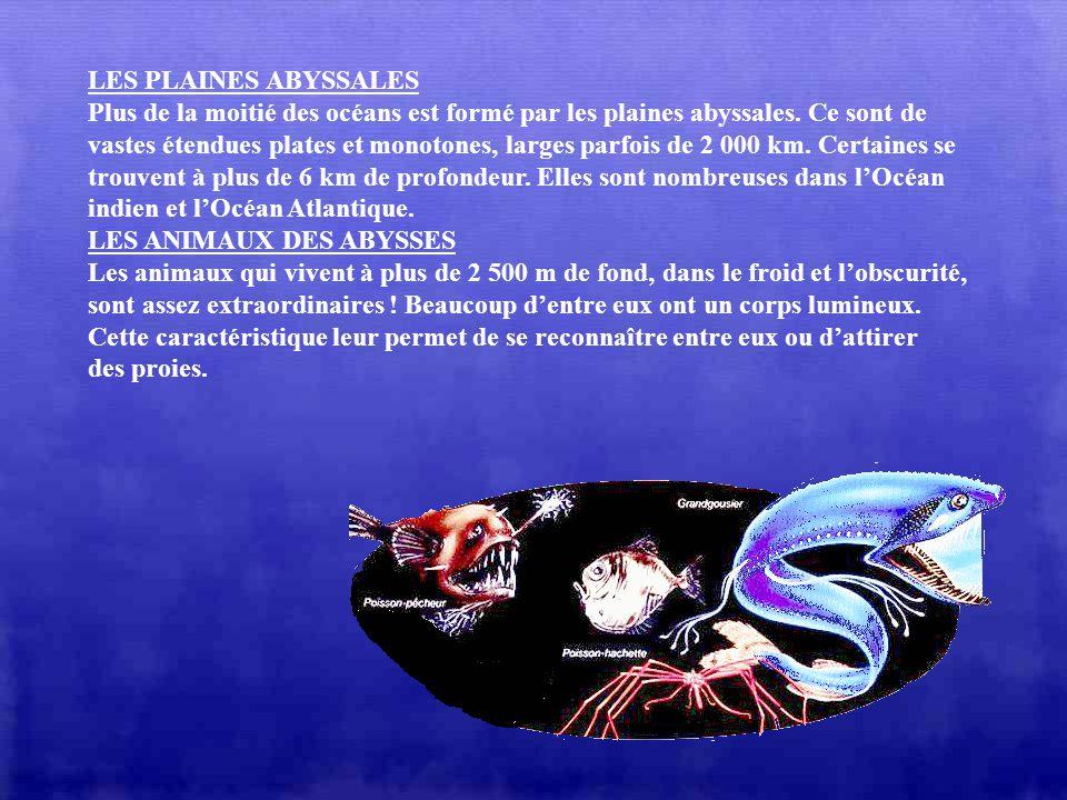 LES PLAINES ABYSSALES Plus de la moitié des océans est formé par les plaines abyssales. Ce sont de.