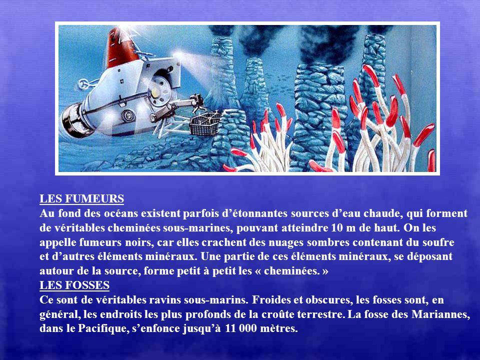 LES FUMEURS Au fond des océans existent parfois d'étonnantes sources d'eau chaude, qui forment.