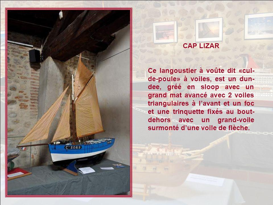 CAP LIZAR