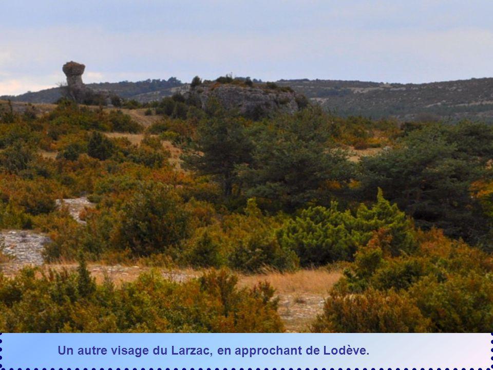 Un autre visage du Larzac, en approchant de Lodève.