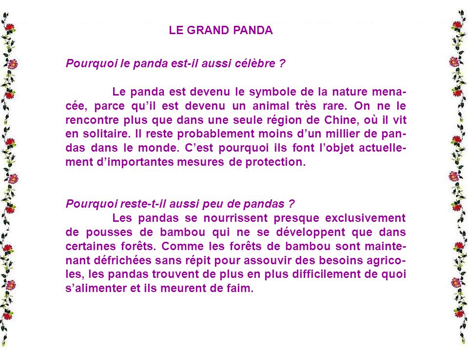 LE GRAND PANDA Pourquoi le panda est-il aussi célèbre