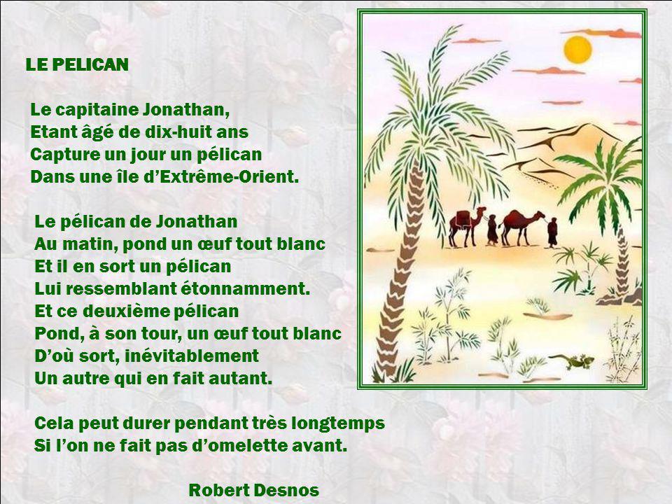 LE PELICAN Le capitaine Jonathan, Etant âgé de dix-huit ans. Capture un jour un pélican. Dans une île d'Extrême-Orient.