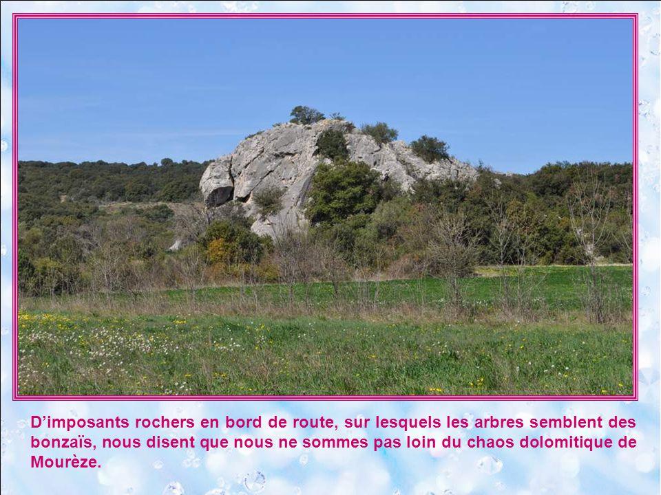D'imposants rochers en bord de route, sur lesquels les arbres semblent des bonzaïs, nous disent que nous ne sommes pas loin du chaos dolomitique de Mourèze.