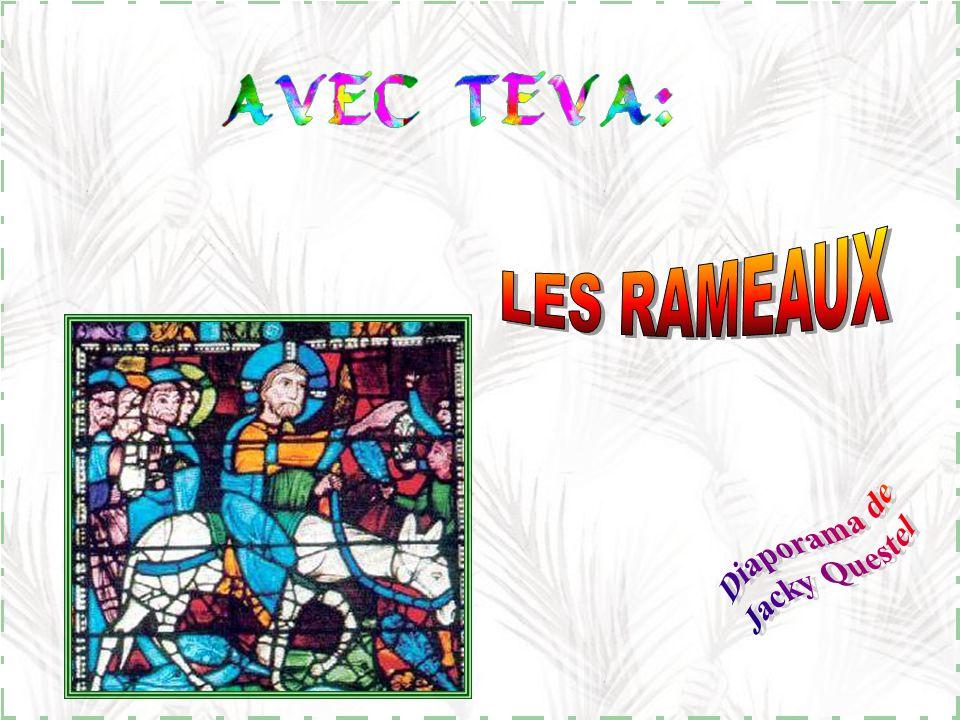LES RAMEAUX Diaporama de Jacky Questel