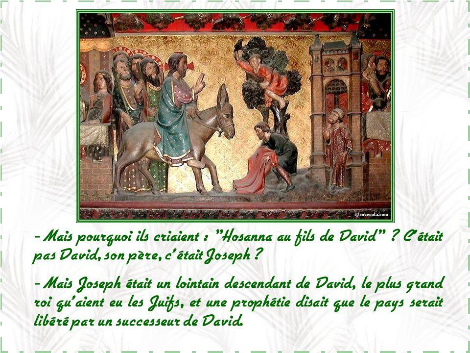 Mais pourquoi ils criaient : Hosanna au fils de David