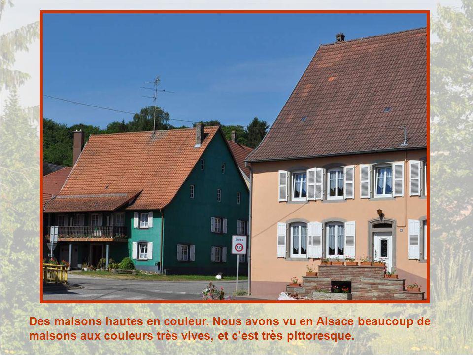 Des maisons hautes en couleur
