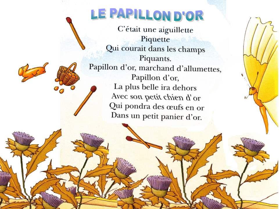 LE PAPILLON D OR