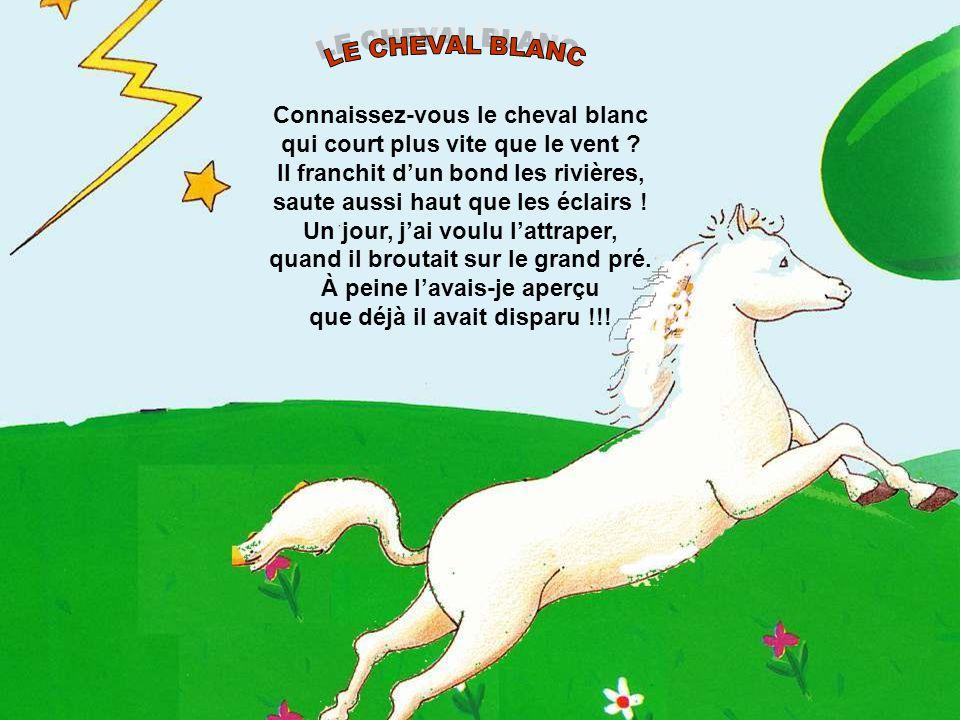 Connaissez-vous le cheval blanc qui court plus vite que le vent