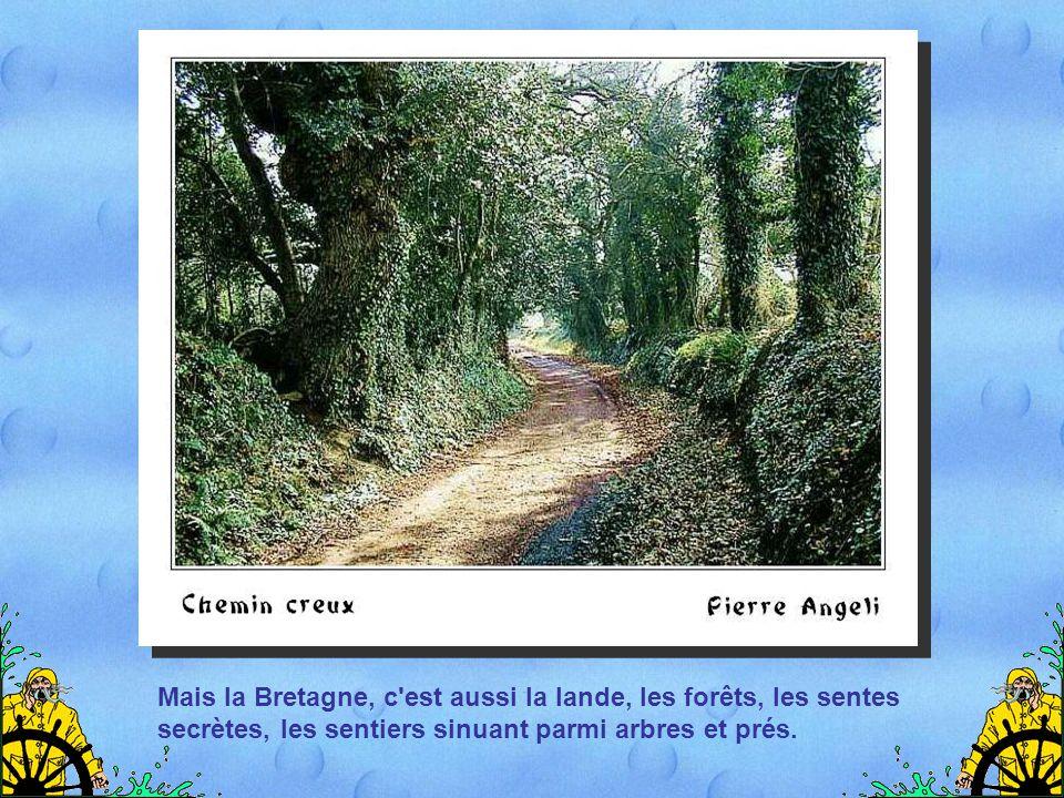 Mais la Bretagne, c est aussi la lande, les forêts, les sentes secrètes, les sentiers sinuant parmi arbres et prés.