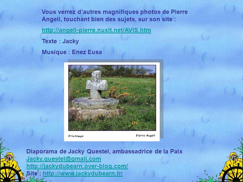 Vous verrez d'autres magnifiques photos de Pierre Angeli, touchant bien des sujets, sur son site :