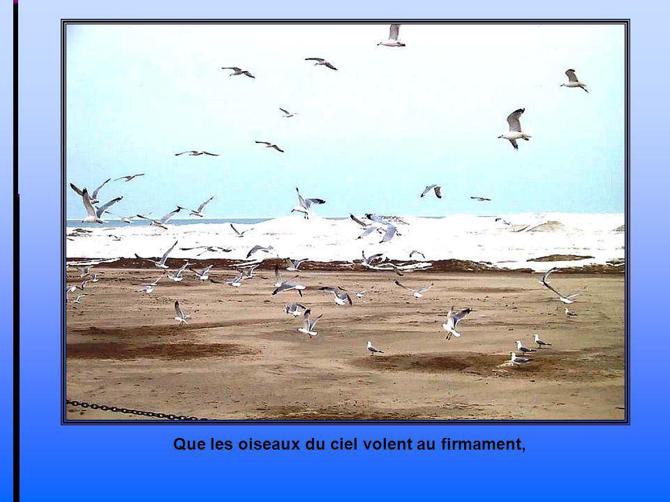 Que les oiseaux du ciel volent au firmament,
