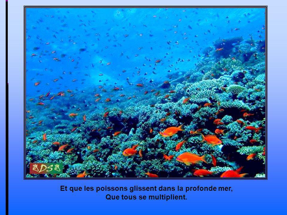 Et que les poissons glissent dans la profonde mer,