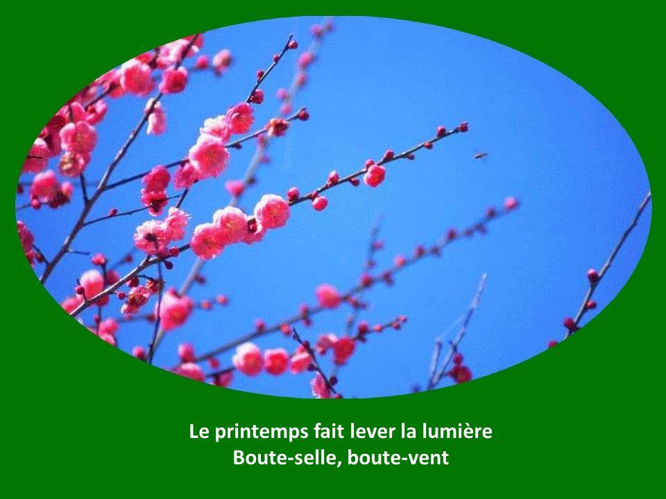 Le printemps fait lever la lumière Boute-selle, boute-vent