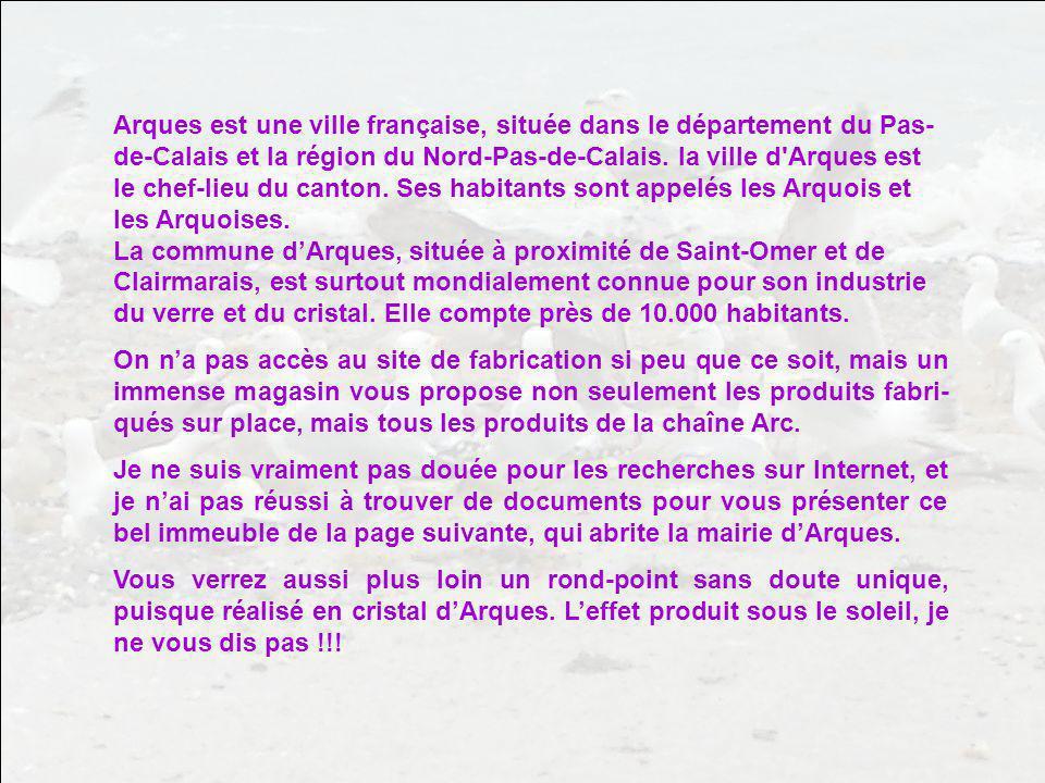 Arques est une ville française, située dans le département du Pas-de-Calais et la région du Nord-Pas-de-Calais. la ville d Arques est le chef-lieu du canton. Ses habitants sont appelés les Arquois et les Arquoises. La commune d'Arques, située à proximité de Saint-Omer et de Clairmarais, est surtout mondialement connue pour son industrie du verre et du cristal. Elle compte près de 10.000 habitants.