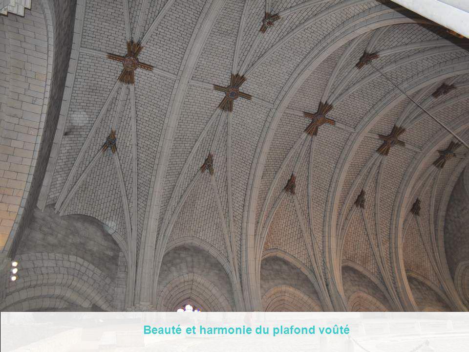 Beauté et harmonie du plafond voûté