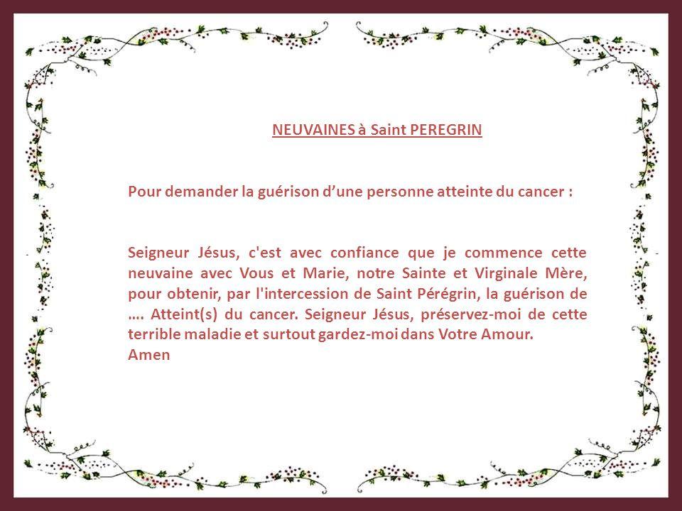 NEUVAINES à Saint PEREGRIN