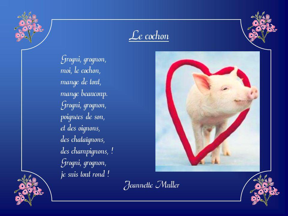 Le cochon Grogni, grognon, moi, le cochon, mange de tout,