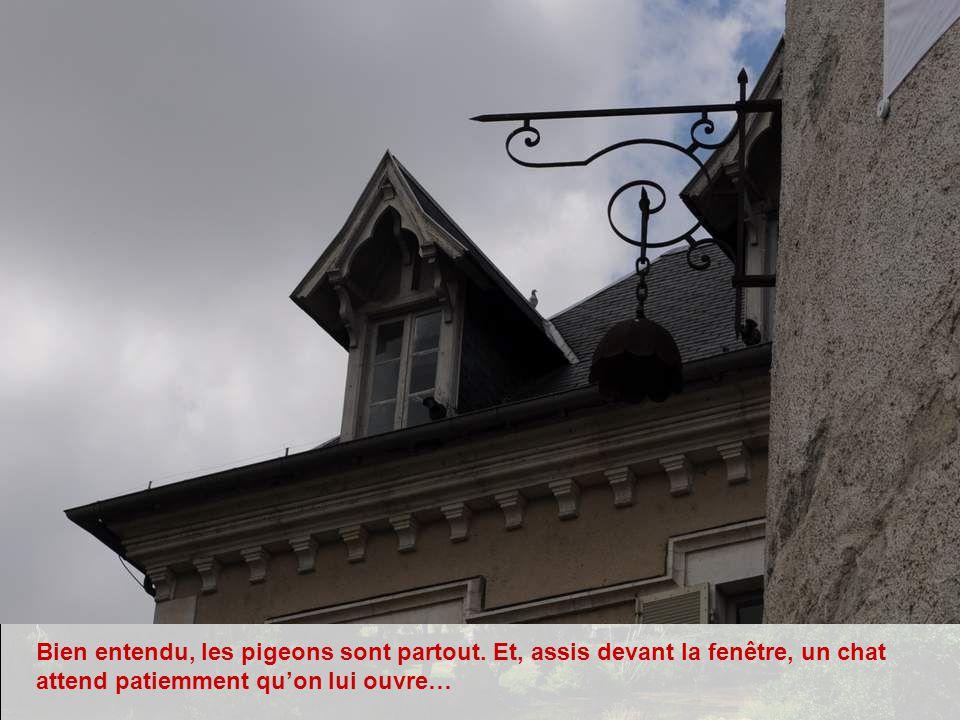 Bien entendu, les pigeons sont partout