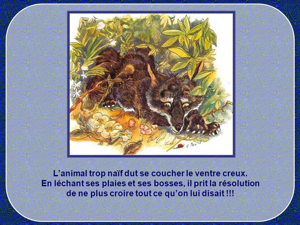 L'animal trop naïf dut se coucher le ventre creux.