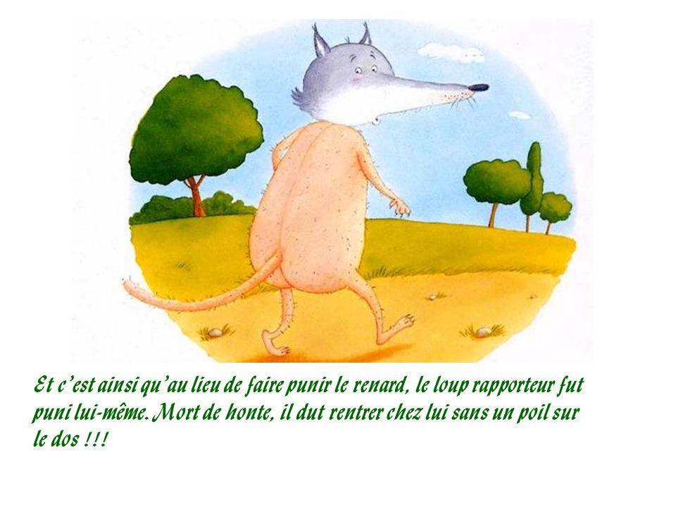 Et c'est ainsi qu'au lieu de faire punir le renard, le loup rapporteur fut