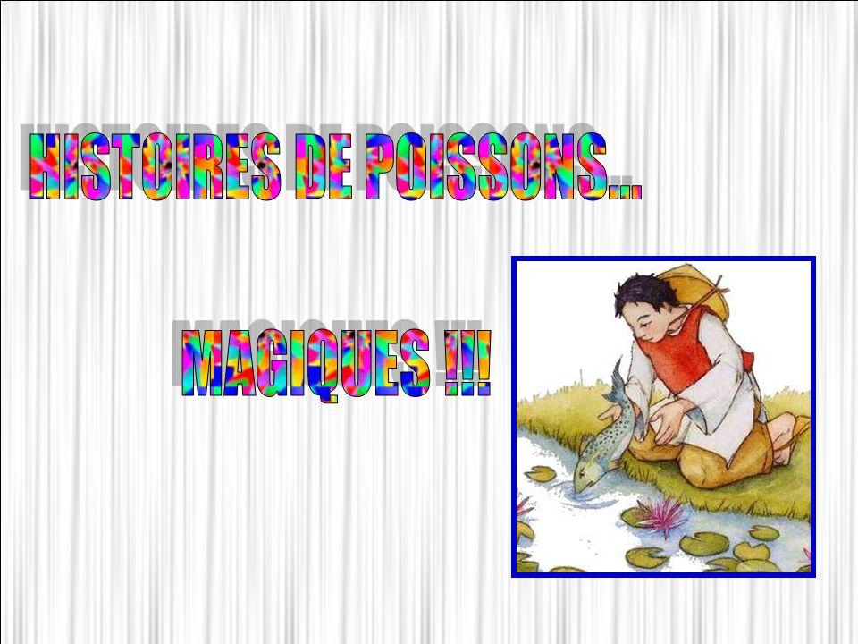HISTOIRES DE POISSONS... MAGIQUES !!!