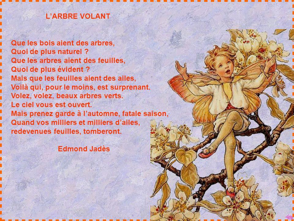 L'ARBRE VOLANT