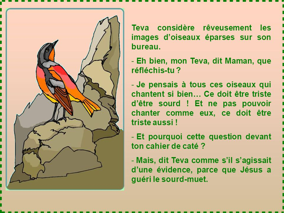 Teva considère rêveusement les images d'oiseaux éparses sur son bureau.