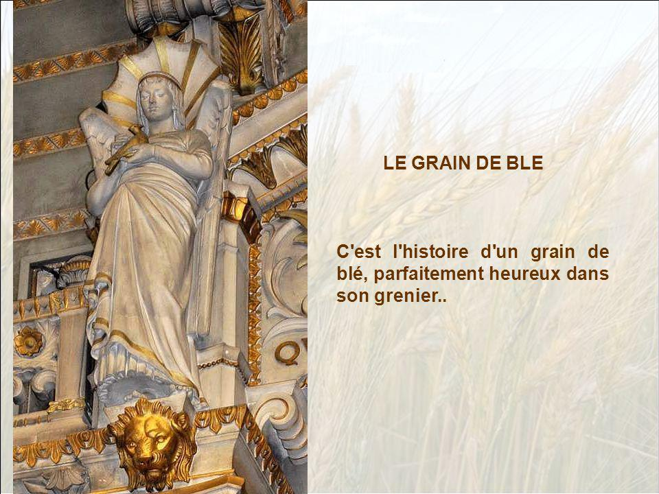 LE GRAIN DE BLE C est l histoire d un grain de blé, parfaitement heureux dans son grenier..